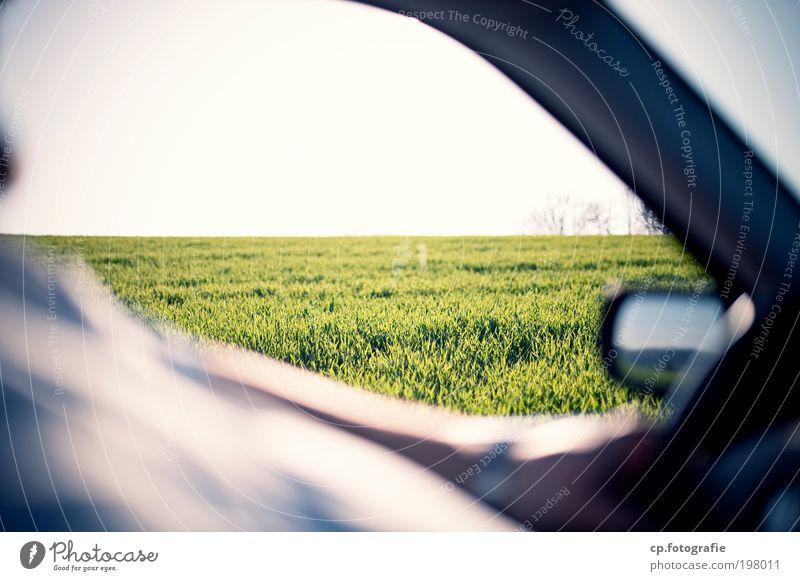 Foto Tour Safari maskulin Mann Erwachsene Arme Bauch Natur Pflanze Sonne Schönes Wetter Gras Verkehrsmittel Straßenverkehr Autofahren Fahrzeug PKW Seitenspiegel