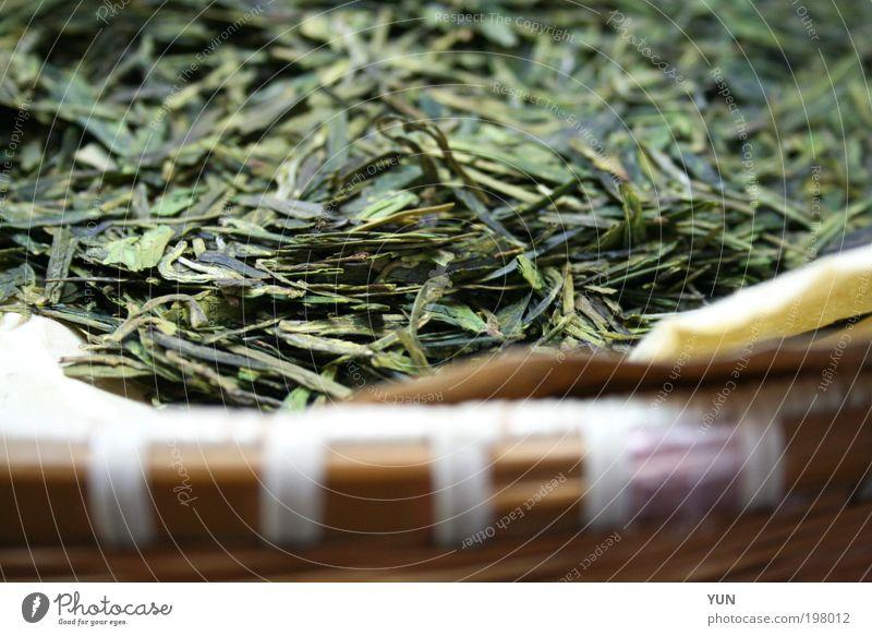 Korb mit Tee Pflanze grün Blatt Gesundheit braun genießen trocken Wohlgefühl Duft Schalen & Schüsseln Teepflanze Durst getrocknet Nutzpflanze Kräuter & Gewürze