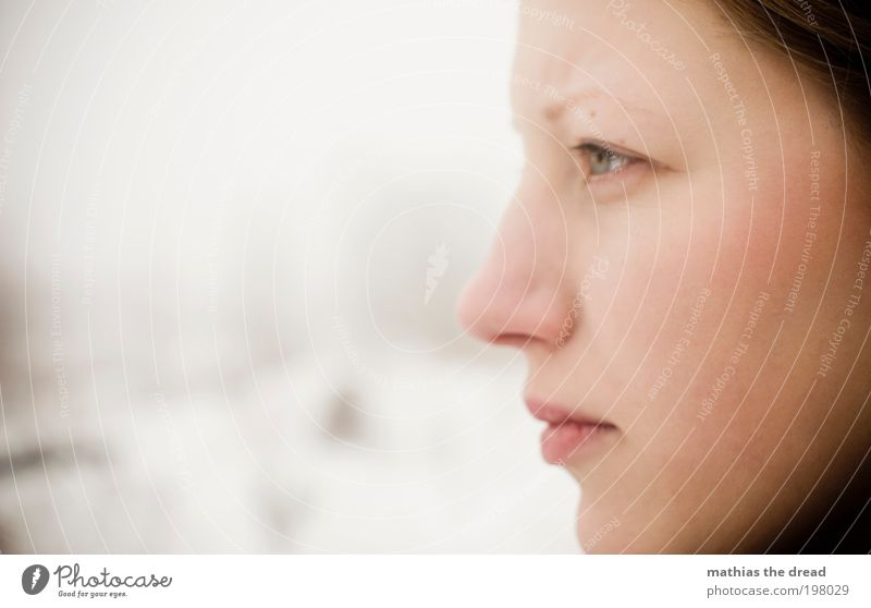 BLICK Mensch Jugendliche schön Gesicht ruhig Auge kalt Schnee feminin träumen Traurigkeit Denken Mund Kraft Erwachsene Nase