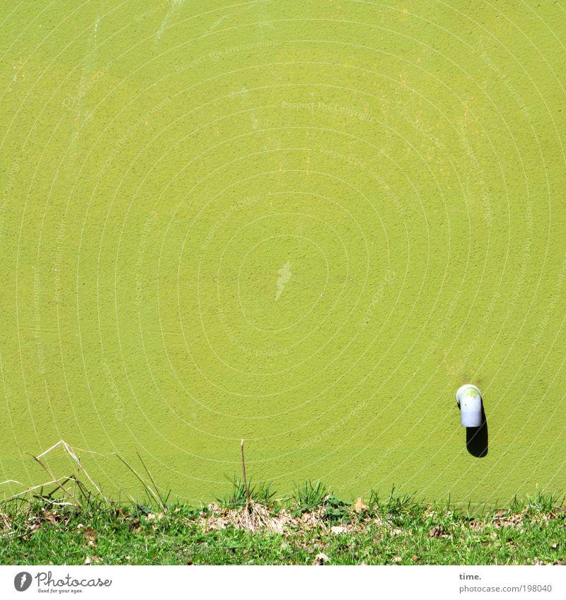 Auslaufmodell Wasser Sonne grün Haus Farbe Wiese Wand Gras Frühling Farbstoff Beton Treppe Wachstum Quadrat Röhren Kunststoff