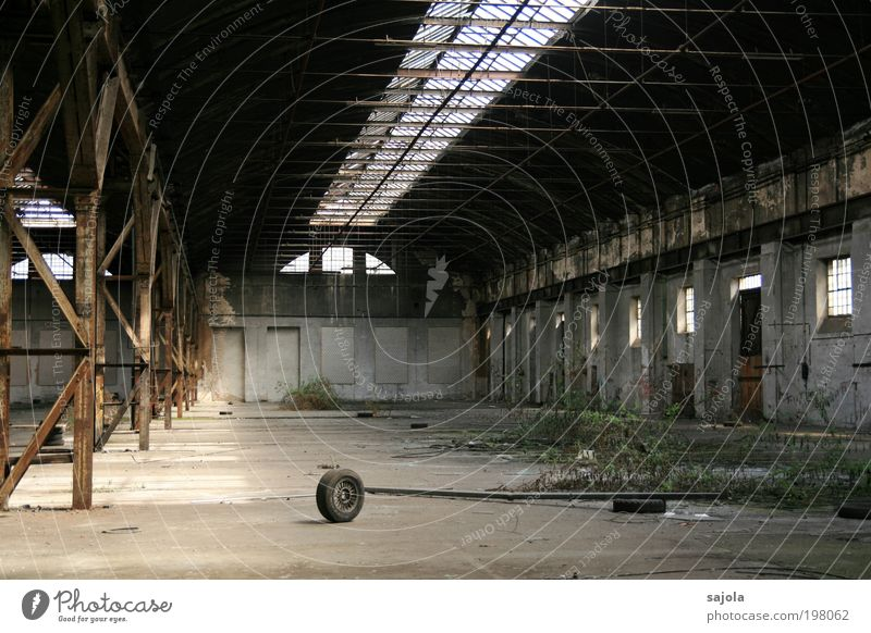 dem untergang geweiht [LUsertreffen 04 10] Pflanze grau Stein Traurigkeit Gebäude Lager Metall Architektur Beton leer Fabrik Dach Wandel & Veränderung