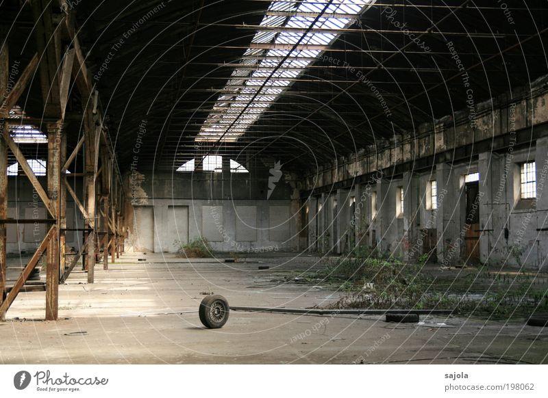 dem untergang geweiht [LUsertreffen 04|10] Pflanze Wildpflanze Industrieanlage Fabrik Ruine Bauwerk Gebäude Architektur Stein Beton Metall grau Verstrebung
