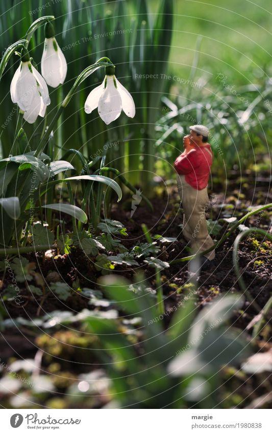 Miniwelten - Ich höre nichts! Arbeit & Erwerbstätigkeit Gartenarbeit Arbeitsplatz Mensch maskulin Mann Erwachsene 1 Natur Pflanze Schönes Wetter Blume Gras