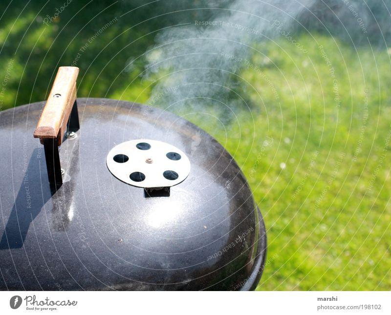 all´n my grill grün Ernährung Garten Rasen Freizeit & Hobby Rauch lecker Duft Grillen Gully Gastronomie Grillrost Kochen & Garen & Backen Grillsaison