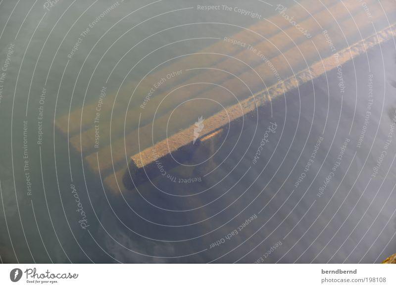 Bank Natur Wasser Holz Stimmung lustig tauchen Vergänglichkeit unten Gesellschaft (Soziologie) skurril bizarr Möbel stagnierend Reflexion & Spiegelung Parkbank Endzeitstimmung