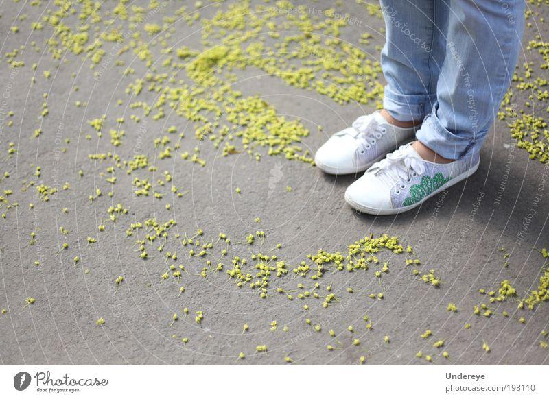 Federpartikel Mensch Mädchen Jugendliche Beine 1 13-18 Jahre Kind Frühling Blüte Jeanshose Turnschuh blau gelb weiß Farbfoto Außenaufnahme Detailaufnahme Tag