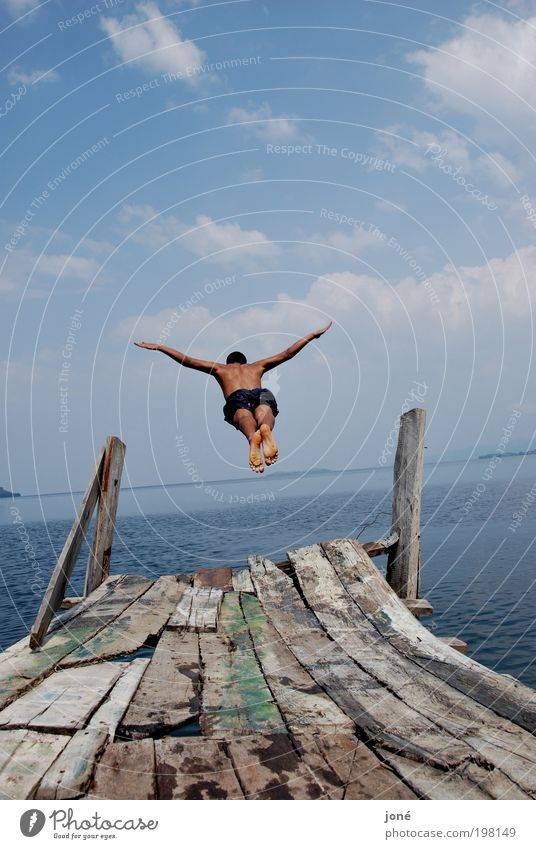 flug/fall maskulin Junger Mann Jugendliche Körper 1 Mensch 18-30 Jahre Erwachsene Natur Landschaft Luft Wasser Himmel Sommer Schönes Wetter See Badehose Holz