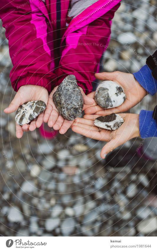 Steinsammlung Mensch Kind Natur schön Hand Mädchen Umwelt Leben Junge Freizeit & Hobby Zufriedenheit Ausflug glänzend Kindheit authentisch