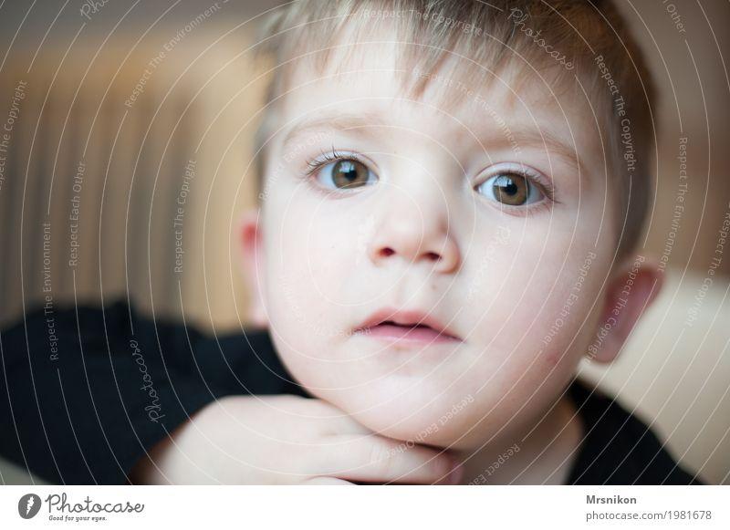 Blick Mensch Kind Kleinkind Junge Kindheit Leben Auge 1 1-3 Jahre Kommunizieren warten Sohn blond braunes Auge grüne augen schön niedlich frech Denken anschauen