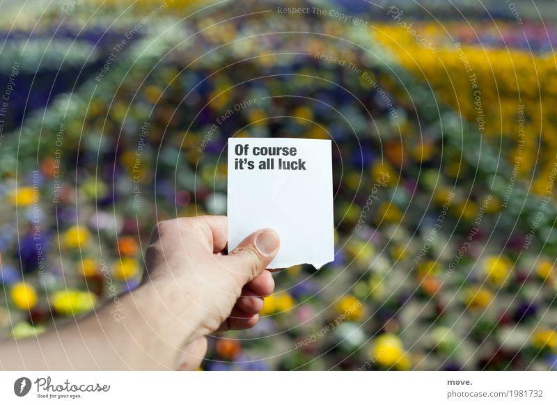 Hand hält einen Zettel Of course it´s all luck über Blumenmeer Lifestyle Design Glück Zufriedenheit 1 Mensch Musiknoten Papier Zeichen Schilder & Markierungen