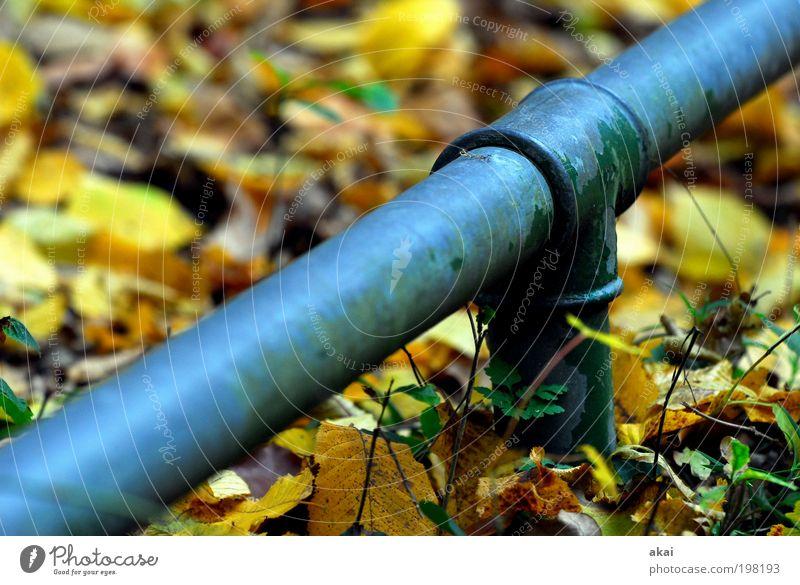 Volles Rohr! blau grün gelb Gefühle Metall elegant Leichtathletik