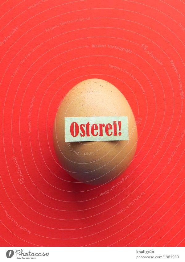 Osterei! Lebensmittel Ei Ernährung Frühstück Bioprodukte Schriftzeichen Schilder & Markierungen Kommunizieren rund braun rot weiß Fröhlichkeit Frühlingsgefühle