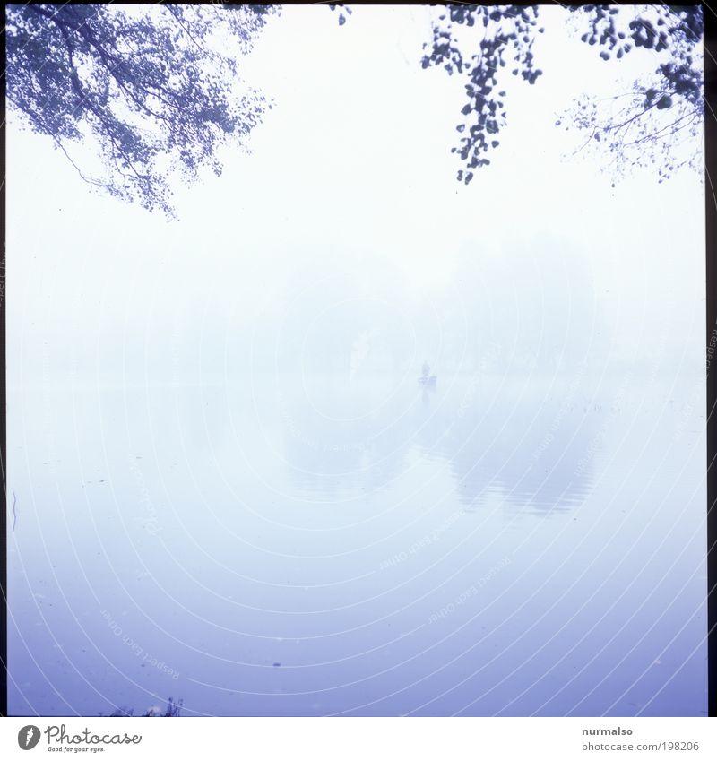 Angler Seelen alleine Fisch Angeln Joggen maskulin Mann Erwachsene 1 Mensch Natur Landschaft Pflanze Tier Urelemente Wasser Herbst Klima Nebel Binnenschifffahrt