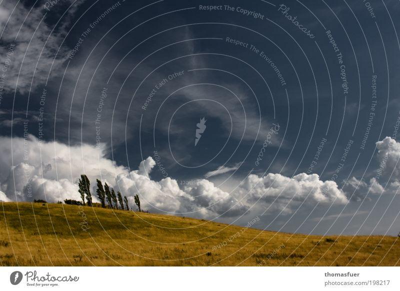 McPom Ferien & Urlaub & Reisen Tourismus Ferne Freiheit Sommerurlaub Natur Landschaft Erde Luft Himmel Wolken Schönes Wetter Wind Baum Feld Hügel groß Wärme