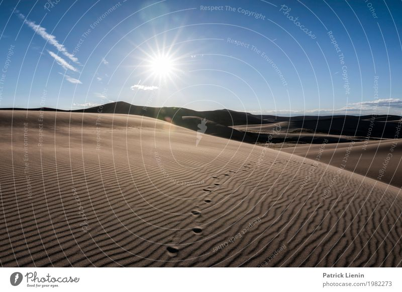 Great Sand Dunes National Park, Colorado, USA Himmel Ferien & Urlaub & Reisen Natur Sommer Sonne Erholung ruhig Wärme Ausflug Zufriedenheit wandern Wetter
