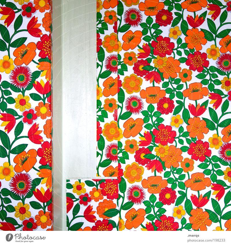 Retro schön alt Blume Pflanze Wohnung Hintergrundbild Lifestyle retro Dekoration & Verzierung Häusliches Leben Tapete Umzug (Wohnungswechsel) Nostalgie Renovieren Lücke einrichten