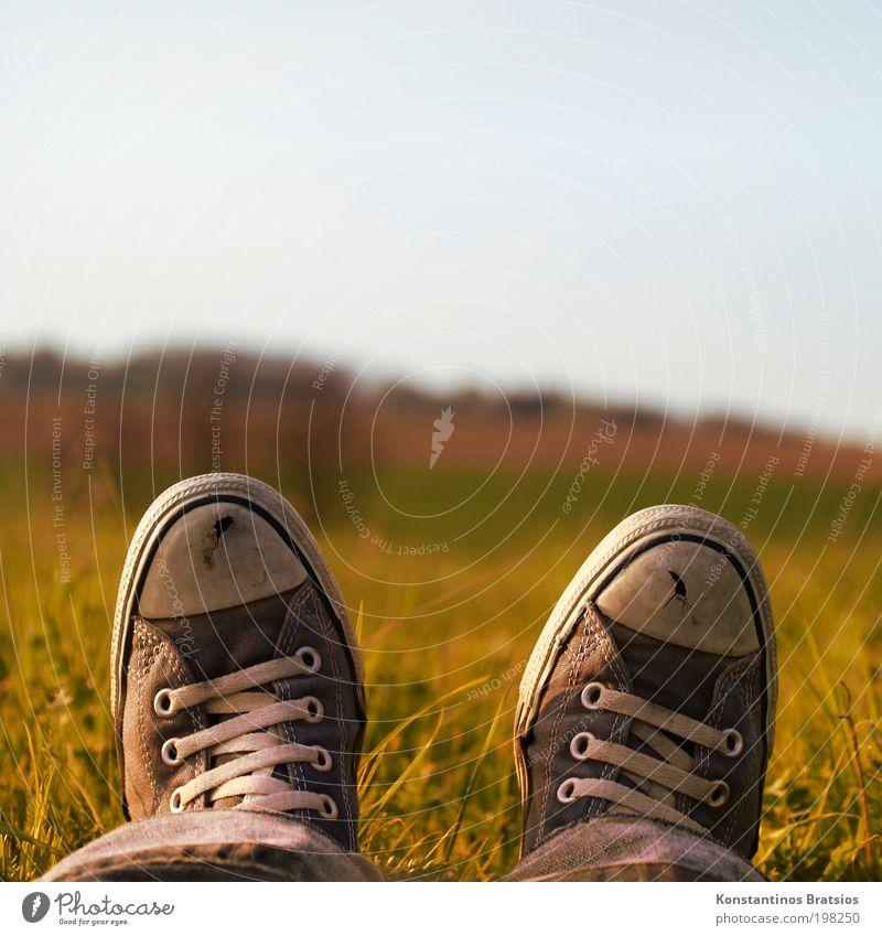 Ewige Treue Lifestyle Himmel Frühling Schönes Wetter Pflanze Gras Wiese Hose Jeanshose Schuhe Chucks genießen liegen träumen alt hell natürlich retro Wärme