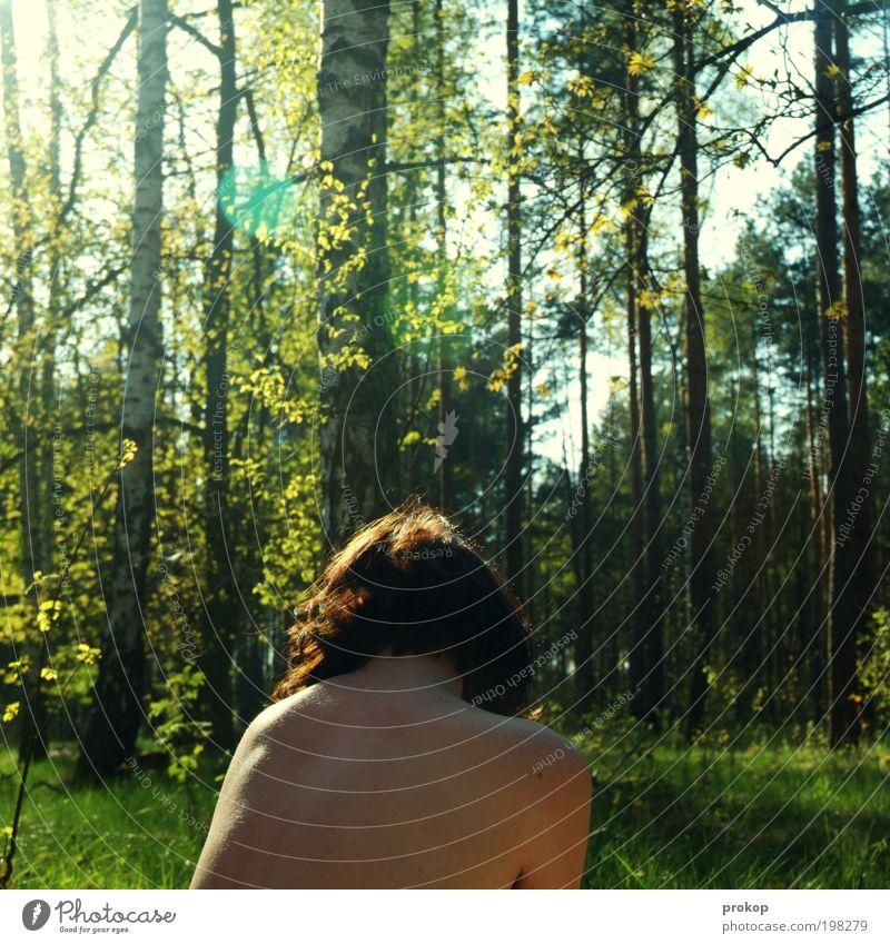 Im Land der Düfte und Zecken Mensch Frau Natur Jugendliche Ferien & Urlaub & Reisen schön Baum Pflanze Sommer ruhig Erwachsene Wald Umwelt Landschaft Wiese feminin