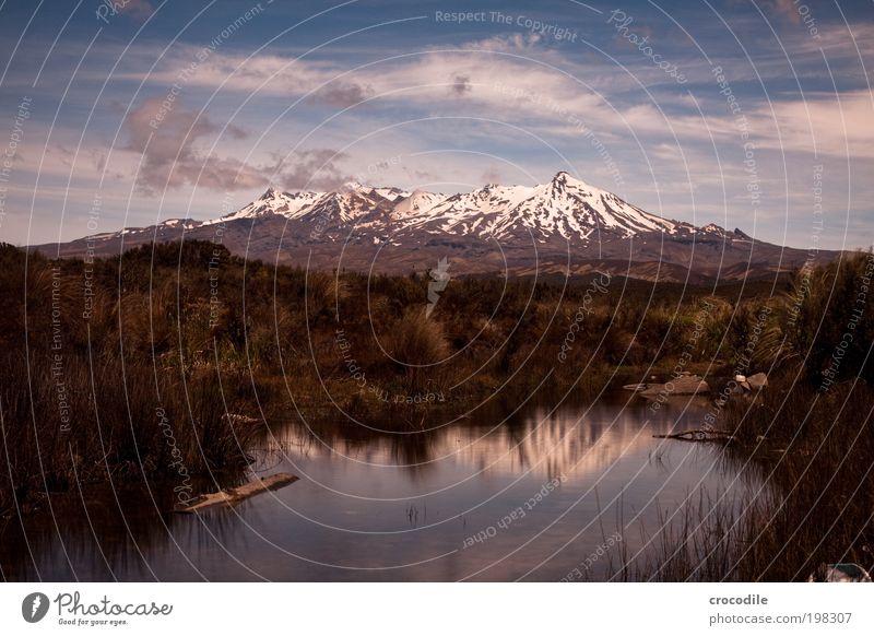 New Zealand XXXV Umwelt Natur Landschaft Urelemente Erde Feuer Himmel Wolken Sonnenlicht Sommer Schönes Wetter Sträucher Wildpflanze Felsen Berge u. Gebirge