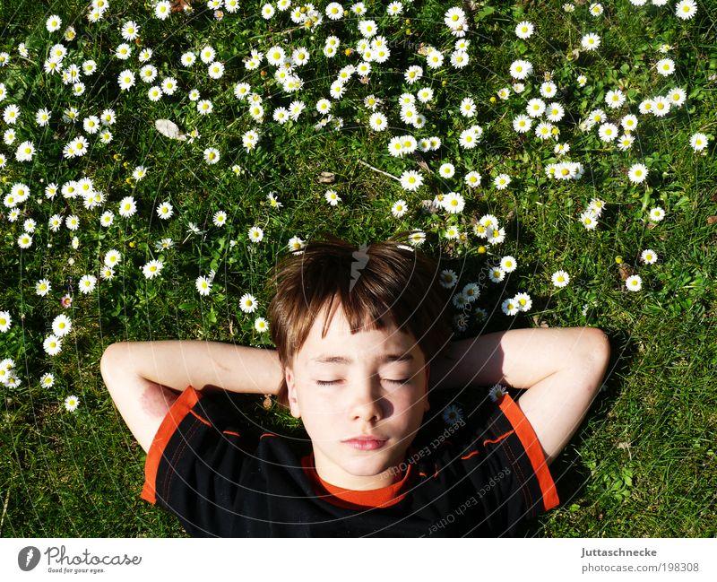 Have a Break Mensch Kind Natur Jugendliche Blume Ferien & Urlaub & Reisen ruhig Erholung Junge Wiese Frühling Garten Kopf Zufriedenheit maskulin