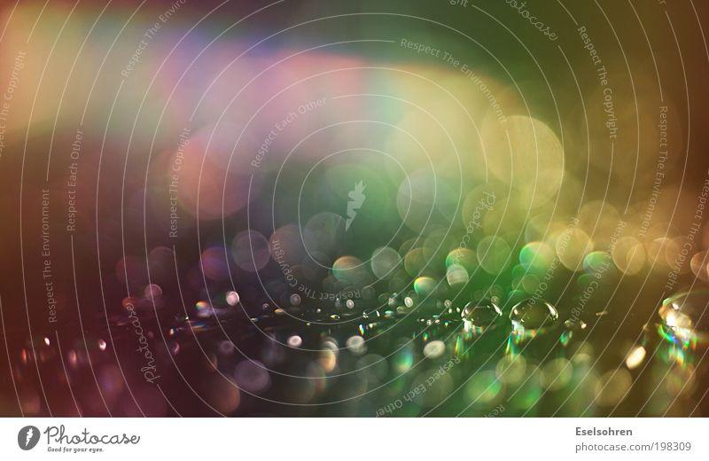 lluvia Compact Disc Wassertropfen glänzend leuchten nass blau mehrfarbig gelb grün violett rosa rot Unschärfe Farbfoto Innenaufnahme Nahaufnahme Detailaufnahme