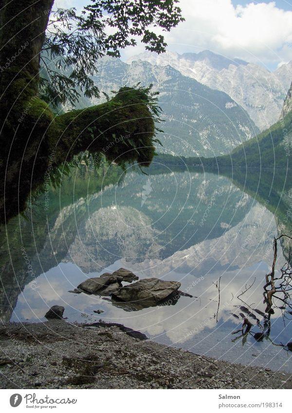 Stille Natur Wasser schön Baum Ferien & Urlaub & Reisen ruhig Erholung Berge u. Gebirge See Landschaft Stimmung Romantik Frieden natürlich Idylle Moos