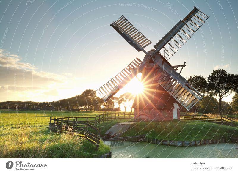Sonnenschein hinter holländischer Windmühle Natur Landschaft Himmel Sommer Schönes Wetter Gras Wiese Fluss Gebäude Architektur grün Stern Sonnenstrahlen Feld