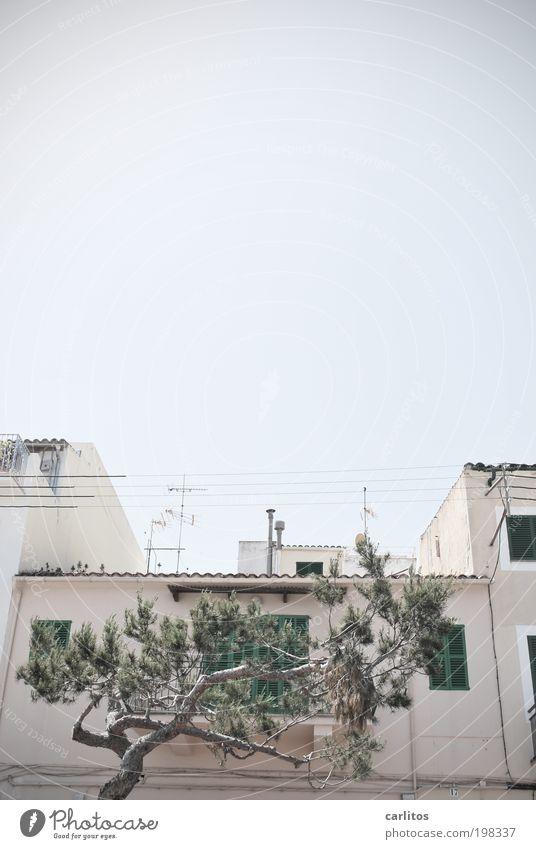Dieses Bild ist ja das LETZTE !! Himmel alt blau weiß Baum Sommer Haus Fenster grau Wärme Fassade Tourismus Elektrizität authentisch Kabel