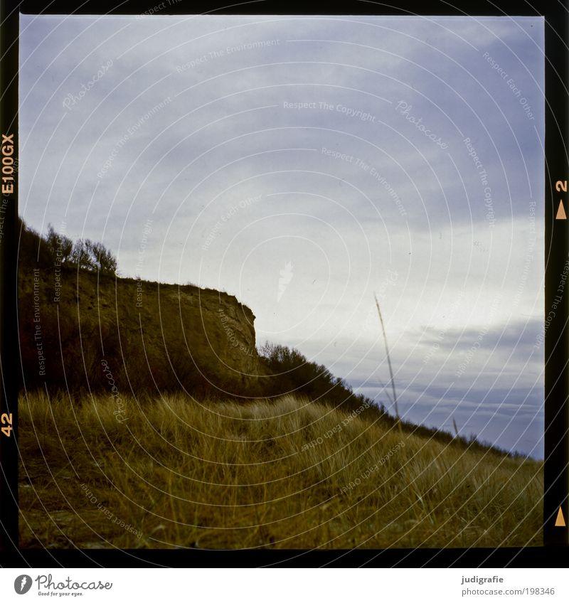 Küste Umwelt Natur Landschaft Pflanze Himmel Klima Gras Ostsee Meer dunkel natürlich Stimmung Scham Ahrenshoop Darß Steilküste Hohes Ufer Dia Farbfoto