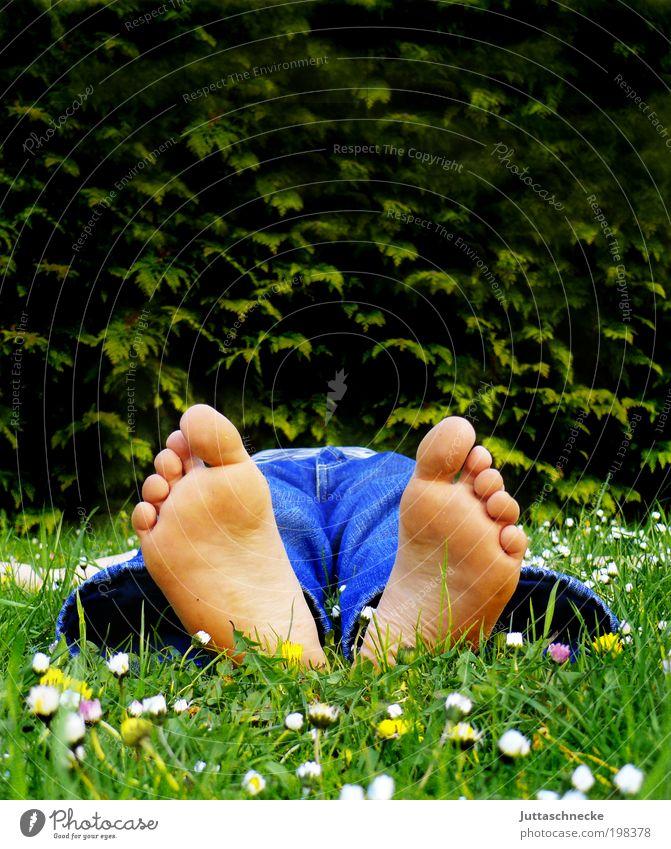 Fussi Leben harmonisch Wohlgefühl Zufriedenheit Erholung ruhig Mensch maskulin Kindheit Fuß 1 Gras Blühend liegen schlafen Frühlingsgefühle