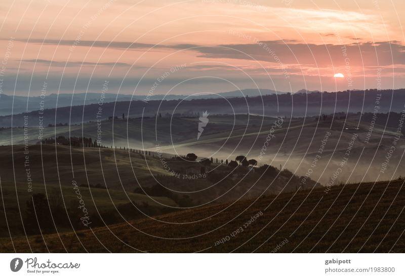 Early Birds Himmel Natur Ferien & Urlaub & Reisen Sommer Farbe Landschaft Erholung ruhig Ferne Umwelt Tourismus Freiheit Ausflug Horizont Feld Idylle