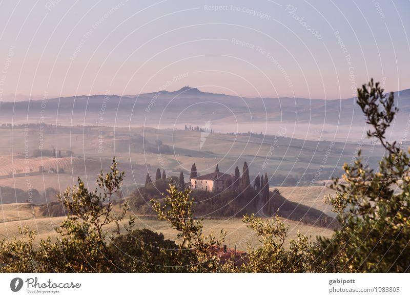 Val d'Orcia, Toskana, Italy Wohlgefühl Sinnesorgane Erholung ruhig Meditation Duft Ferien & Urlaub & Reisen Tourismus Ausflug Abenteuer Ferne Freiheit