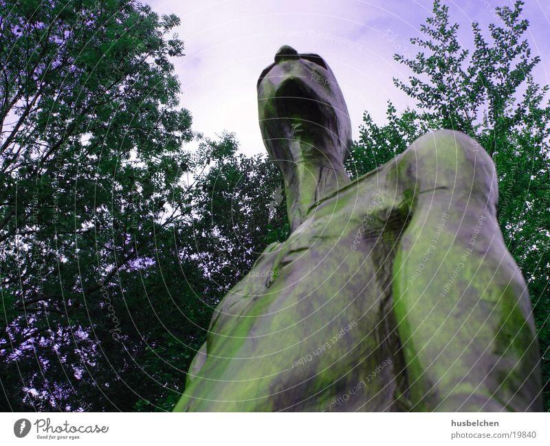 stolz Skulptur Holz Wald Waldlichtung gelb obskur Himmel