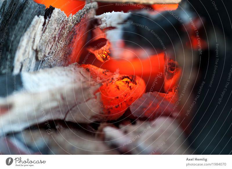In der Glut Fleisch Gemüse Steak Wurstwaren Bratwurst Freizeit & Hobby Grillsaison Grillkohle grillen Holzkohle Sommer heiß orange rot schwarz silber Farbfoto