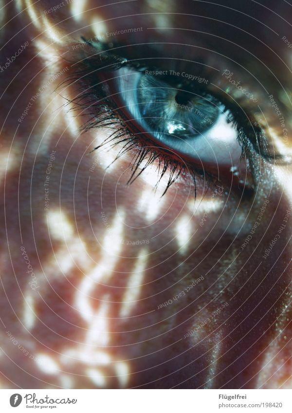 Stille Wasser sind tief feminin Junge Frau Jugendliche Haut Gesicht Auge 1 Mensch 18-30 Jahre Erwachsene Blick Wimpern Pallette blau Strukturen & Formen
