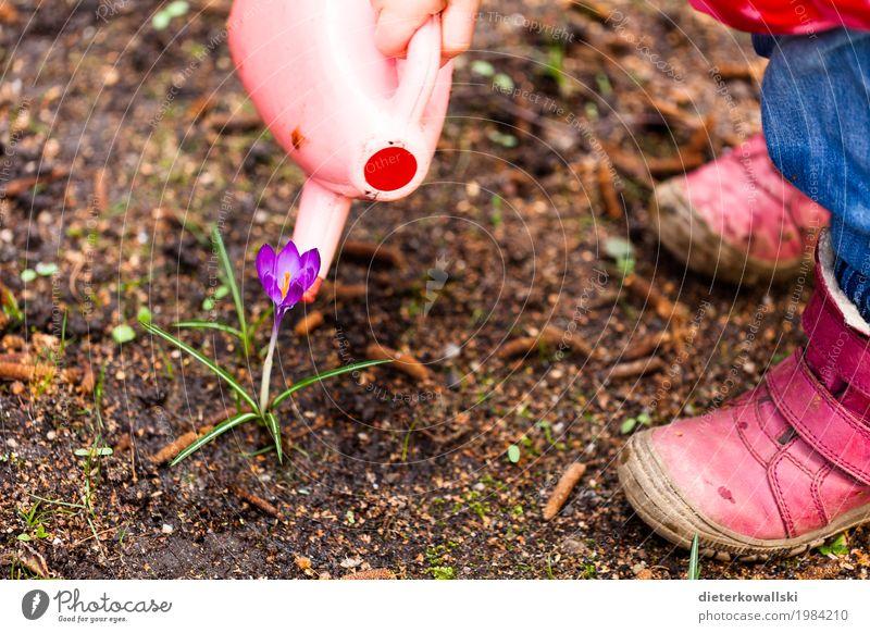 Blumen gießen Ostern Kindererziehung Kindergarten lernen Kleinkind Mädchen 3-8 Jahre Kindheit Umwelt Natur Pflanze Krokusse Garten Spielzeug Freizeit & Hobby
