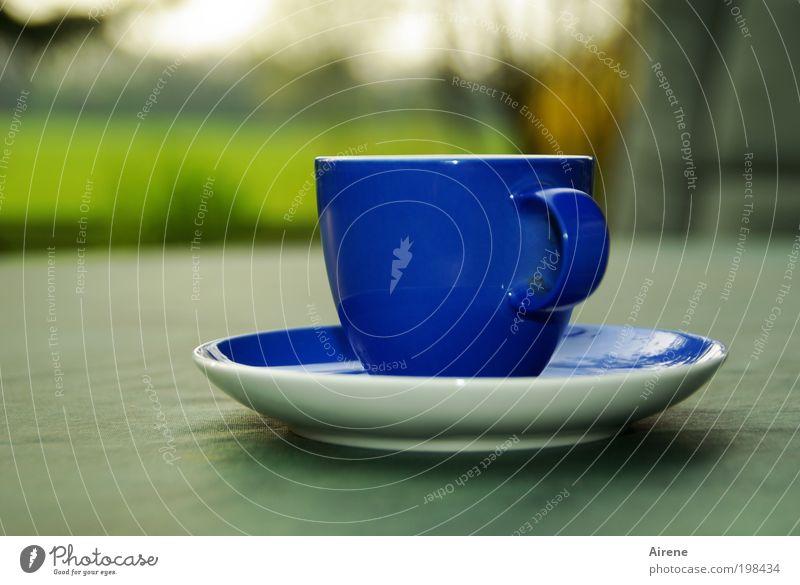die blaue Tasse Kaffeetrinken Espresso Erholung ruhig genießen Kaffeetasse Kaffeepause Geschirr Terrasse einfach grün Zufriedenheit ästhetisch Genuss