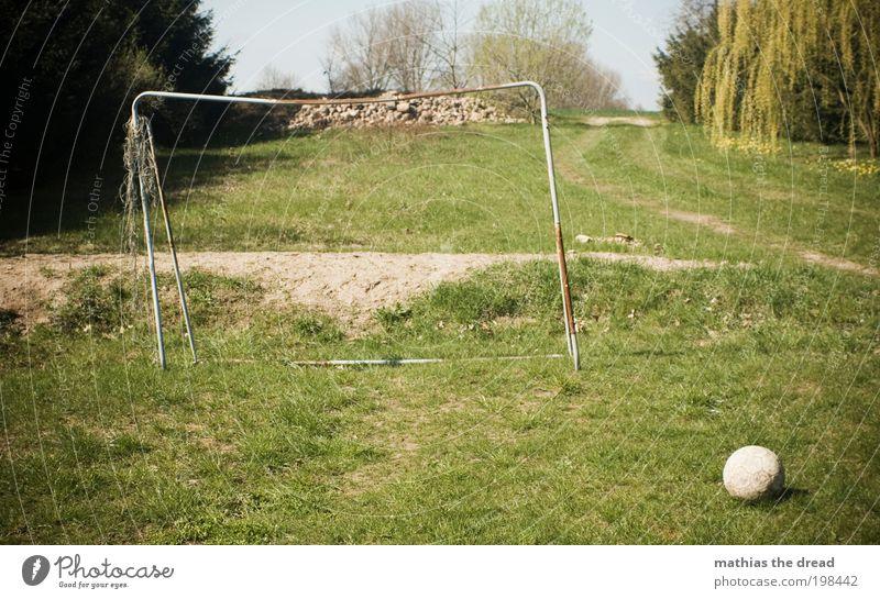 DAS RUNDE MUSS INS ECKIGE Freizeit & Hobby Spielen Fußball Umwelt Natur Landschaft Himmel Horizont Schönes Wetter Pflanze Baum Blume Gras Garten Sport