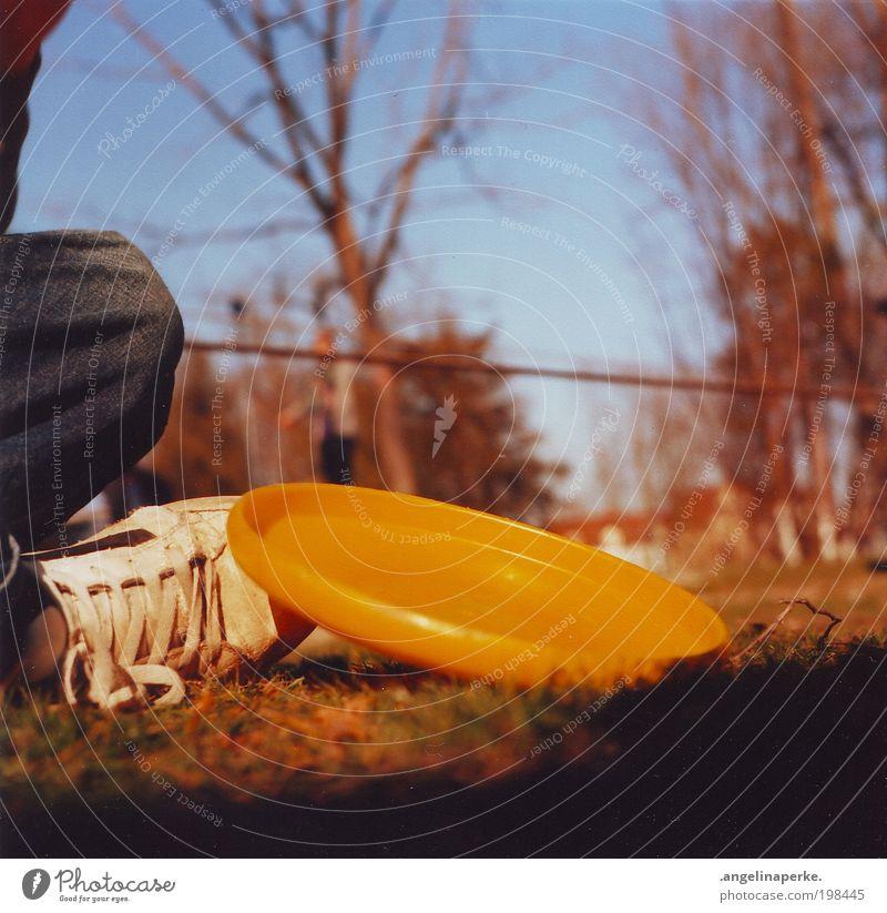 scheibe heizen Sommer Sonne Schatten gelb Frisbee Turnschuh Baum Wiese Himmel Erholung Slacklinen Schwache Tiefenschärfe hocken Froschperspektive Außenaufnahme