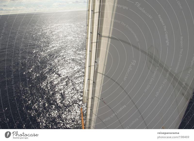 Segeln zum Horizont elegant Abenteuer Ferne Sommer Meer Sport Wassersport Matrosen Kapitän Sonnenlicht Schönes Wetter Atlantik Verkehrswege Schifffahrt Jacht