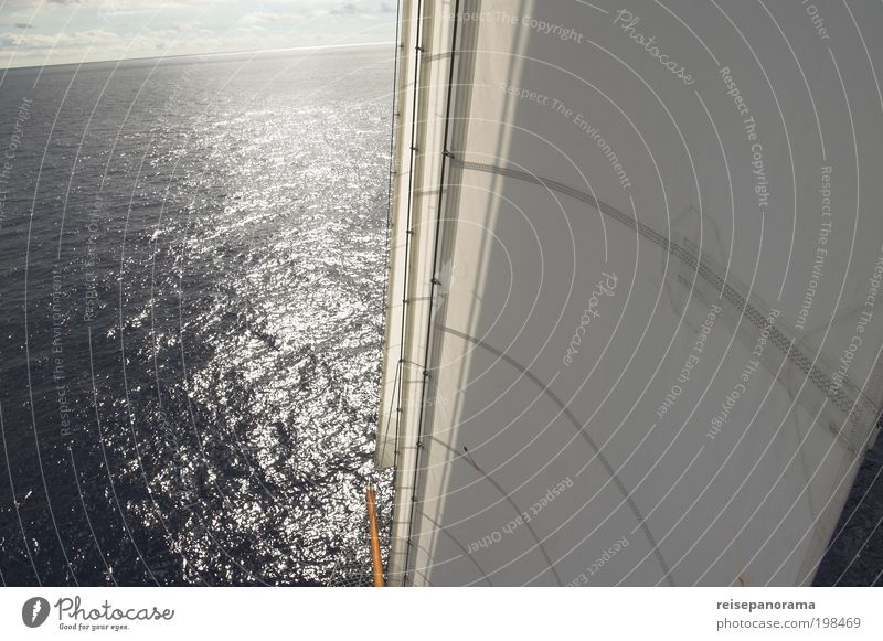 Segeln zum Horizont Wasser Sommer Meer Ferne Erholung Sport elegant außergewöhnlich Abenteuer fahren Unendlichkeit Schönes Wetter Verkehrswege Schifffahrt