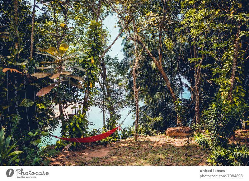 FF# Green Heaven Kunst Kunstwerk ästhetisch Urwald Idylle Urwald Baumweg Hängematte rot Eyecatcher grün Grünpflanze Grünstich Himmel friedlich