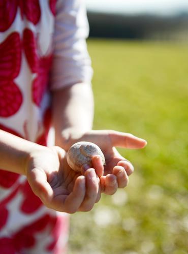 Schneckenhalter Mensch Kind grün Hand Tier Mädchen Gesundheit natürlich feminin rosa Kindheit lernen beobachten Freundlichkeit Sicherheit Schutz