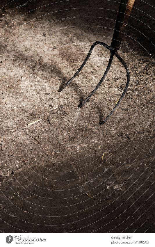 Gabelstapler dunkel Arbeit & Erwerbstätigkeit dreckig Pferd gefährlich Sauberkeit Beruf Bauernhof Kot Müdigkeit Kuh Haustier Schwein Besteck Ausdauer