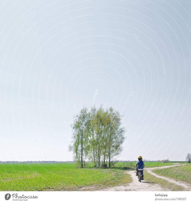maibaum Freizeit & Hobby Fahrradfahren Kindererziehung Junge Kindheit Leben 1 Mensch 3-8 Jahre Umwelt Natur Landschaft Erde Luft Wolkenloser Himmel