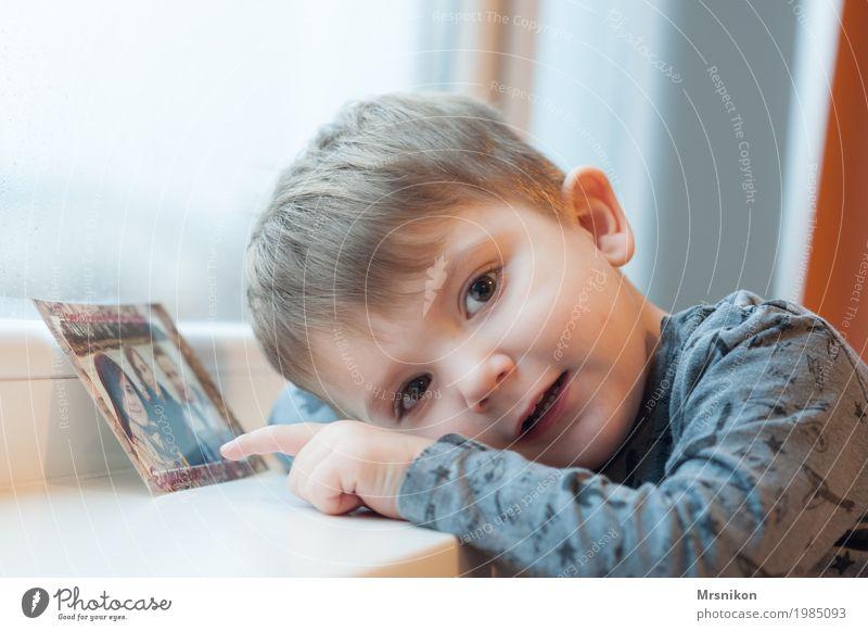 schau mal Freude Glück harmonisch Zufriedenheit Kind Kleinkind Junge Geschwister Bruder Kindheit Leben 1 Mensch 1-3 Jahre beobachten berühren Lächeln Blick