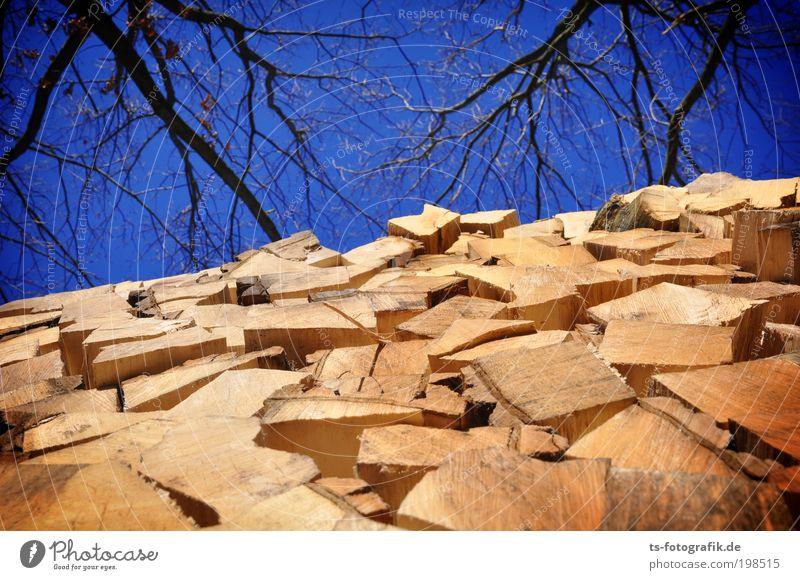 Scheite-Haufen Himmel Natur blau Baum Umwelt Holz Luft braun Klima natürlich Energiewirtschaft Feuer Warmherzigkeit Ast Landwirtschaft trocken