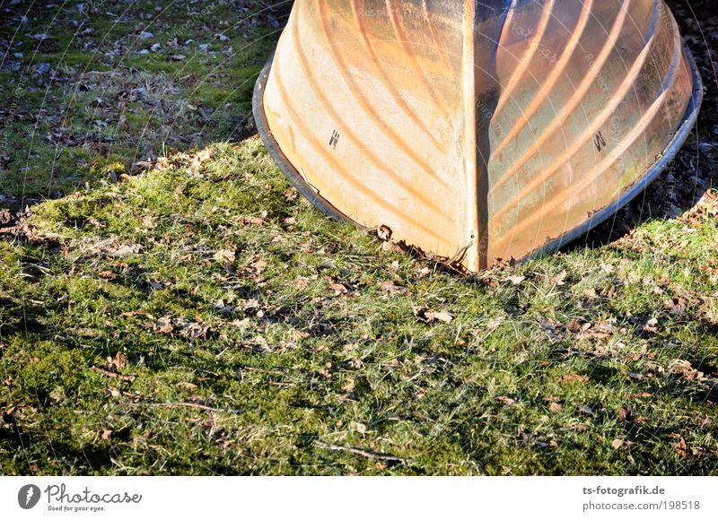 Falschparker Umwelt Natur Urelemente Erde Wasser Sommer Herbst Klima Klimawandel Schönes Wetter Dürre Gras Blatt Küste Strand Meer Bach Fluss Verkehr