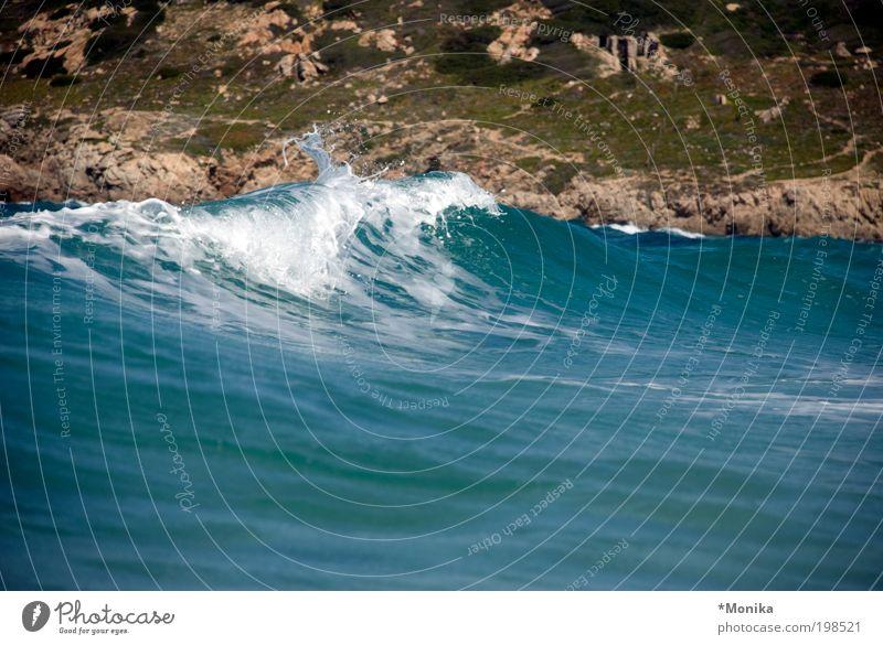 Rena Majore Ferien & Urlaub & Reisen Tourismus Sommer Meer Wellen Natur Urelemente Flüssigkeit groß nass blau Lebensfreude Kraft rein ruhig Sardinien Farbfoto