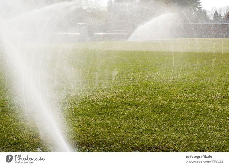 Rasenballett I Wasser grün weiß Sommer Spielen Gras Bewegung Frühling Wärme Regen nass Nebel Wassertropfen ästhetisch Wachstum Klima